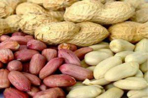 مراكز بيع الفول السوداني