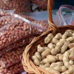أنواع مختلفة من الفول السوداني